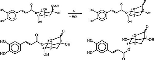 Formation-of-a-15-g-quinolactone-from-chlorogenic-acid-during-roasting