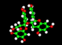 procyanidin molecule in chocolate
