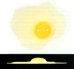 Picture of Grade A egg