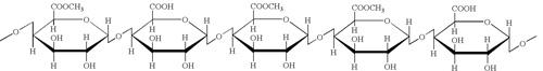 molecule of pectin