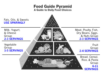 Picture of Food Pyramid